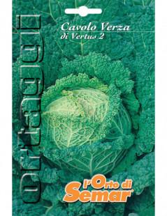 CAVOLO VERZA VERTUS 2 BUSTA...