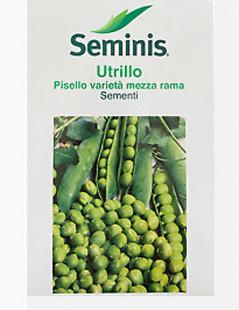 PISELLO UTRILLO