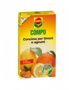 COMPO AGRUMI/LIMONI...